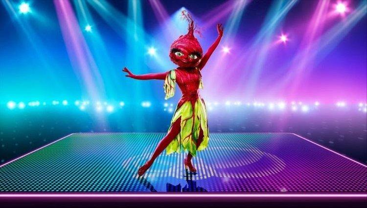 the_masked_dancer_12.jpg